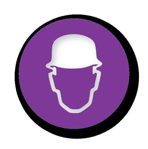16665_Higgins_Icons_Purple-01.png